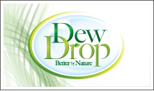 Dew Drop Header